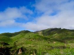 Landscape North