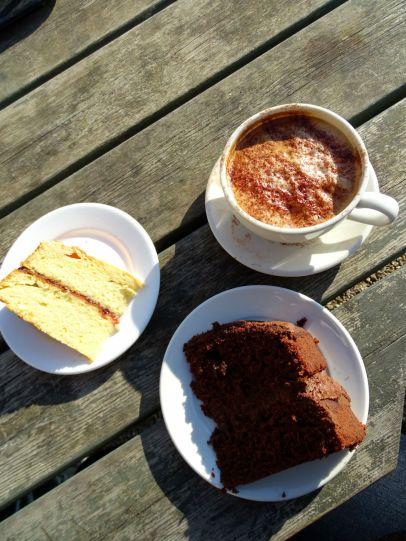 Victoria Sponge and Chocolate Cake