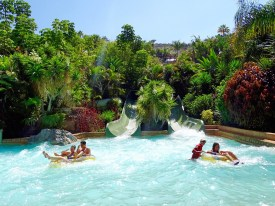 Siam Park - Jungle Snakes