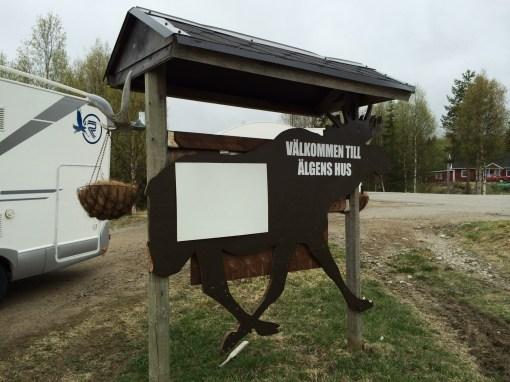 Moose Farm
