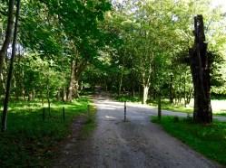 Bike Tour National Park Zuid Kennermerland