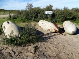 WWII Test Bombs Found in the National Park