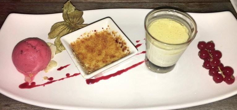 Raspberry Sorbet, Crème Brûlée & Panna Cotta
