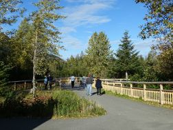 Williwaw Salmon Viewing Area