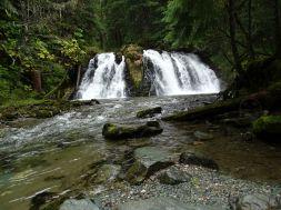 Gold Creek Salmon Bake