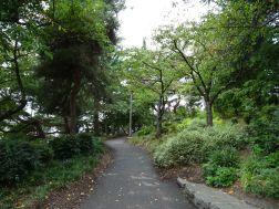 Kobe Terrace Park