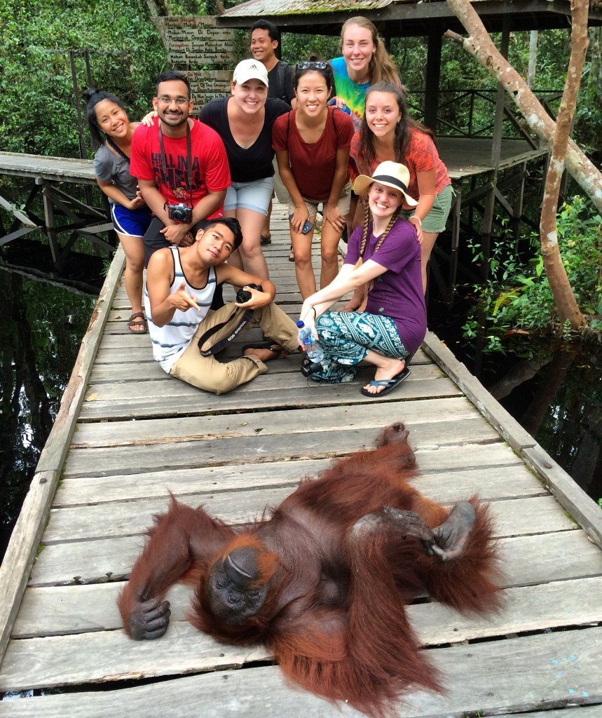 Siswi, the orangutan, couldn't hang with our crew :D