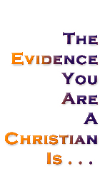 Evidence You Are A Christian