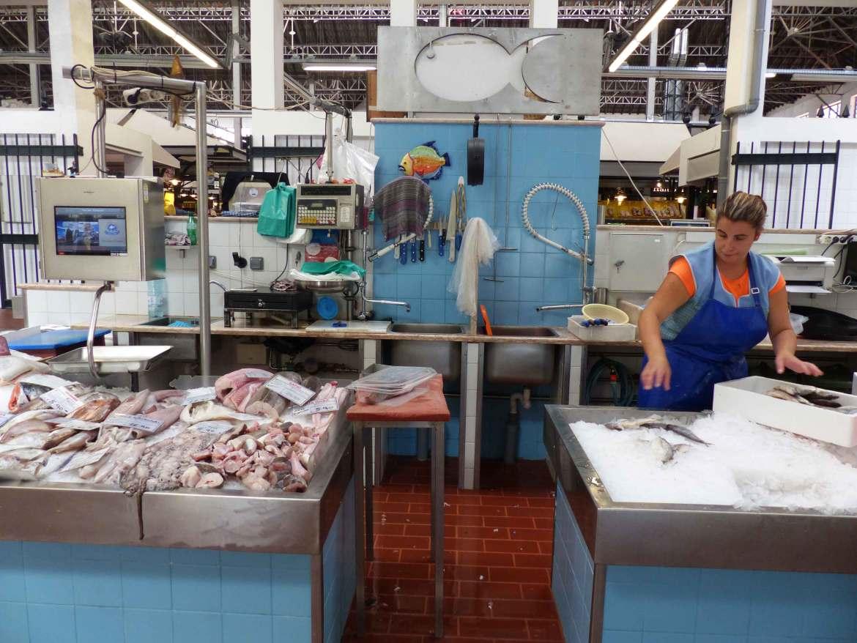 Fangfrischer Fisch aus dem Atlantik