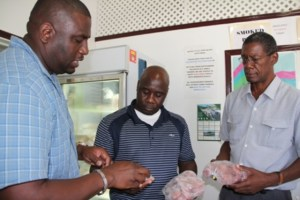 Minister of Agriculture in the Nevis Island Administration Hon. Alexis Jeffers (middle) and Director of Agriculture Mr. Keithley Amory (left) look at local beef with the Abattoir's manager Mr. Gary Griffin (right)