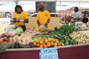 Grace Green's booth with agricultural produce on display at the Department of Agriculture's Open Day 2015 at the Villa Grounds in Charlestown on the second day of the two-day event on March 27, 2015