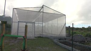 The shade house donated to the Charlestown Primary School by the Government and people of New Zealand through the efforts of Augustine Merchant, Coordinator of the Inter-American Institute for Cooperation on Agriculture (IICA) office in St. Kitts and Nevis and the St. Kitts Nevis Agricultural Youth Forum