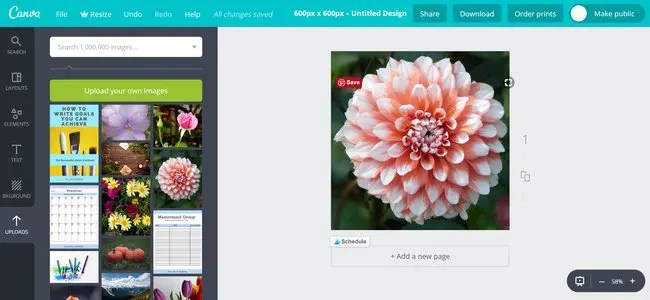 How toProtect Your Art Images on WordPress