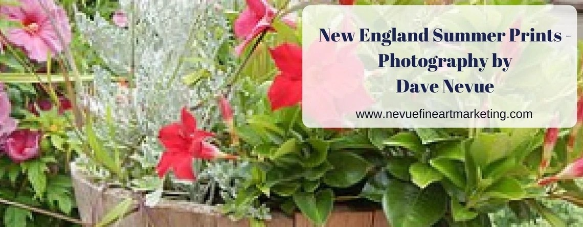 New England Summer Prints – Photography by Dave Nevue