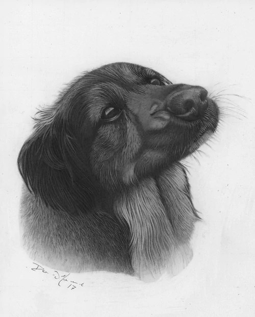 Treat Time Framed Pencil Drawing