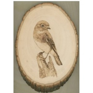 Bluebird Perching Wood Burning On Country Basswood
