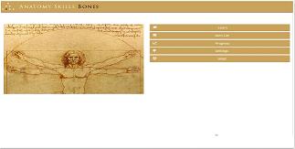 Anatomy Skills  Bones