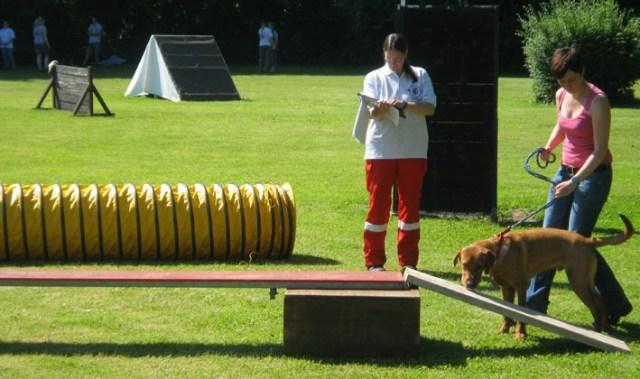 20-06-2012 augsburg rettungshunde new-facts-eu