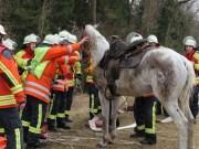 19-02-2014 biberach kirchdorf pferd reiter illerkanal feuerwehr groll new-facts-eu20140219 titel
