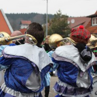 01-02-2014_biberach_tannheim-narrenumzug_fascing_masken_narrenzunft-tannheim_poeppel_new-facts-eu20140201_0114