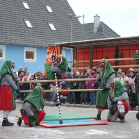 01-02-2014_biberach_tannheim-narrenumzug_fascing_masken_narrenzunft-tannheim_poeppel_new-facts-eu20140201_0179
