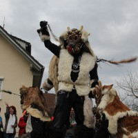 01-02-2014_biberach_tannheim-narrenumzug_fascing_masken_narrenzunft-tannheim_poeppel_new-facts-eu20140201_0320