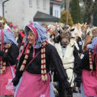 01-02-2014_biberach_tannheim-narrenumzug_fascing_masken_narrenzunft-tannheim_poeppel_new-facts-eu20140201_0321