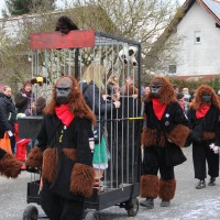 01-02-2014_biberach_tannheim-narrenumzug_fascing_masken_narrenzunft-tannheim_poeppel_new-facts-eu20140201_0323