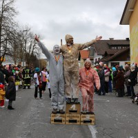 01-03-2014_ostallgaeu_biessenhofen_faschingsumzug-2014_bringezu_new-facts-eu20140301_0067