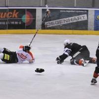 02-02-2014_eishockey_bayernliga-indians_ecdc-memmingen_esc-hassfurt_fuchs_new-facts-eu20140202_0032