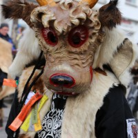 03-02-2014_ravensburg_bad-wurzach_narrensprung_umzug_poeppel_new-facts-eu20140303_0113