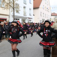 03-02-2014_ravensburg_bad-wurzach_narrensprung_umzug_poeppel_new-facts-eu20140303_0150