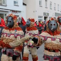 03-02-2014_ravensburg_bad-wurzach_narrensprung_umzug_poeppel_new-facts-eu20140303_0174