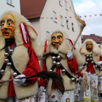 03-02-2014_ravensburg_bad-wurzach_narrensprung_umzug_poeppel_new-facts-eu20140303_0315
