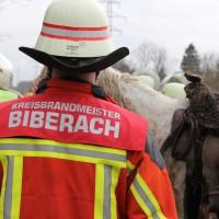 1-02-2014_biberach_kirchdorf_pferd_reiter_illerkanal_feuerwehr_groll_new-facts-eu20140219_0031