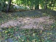 18-10-2013_bab-a7_rastanlage-illertal-west_umweltdelikt_feuerwehr-dettingen_poeppel_new-facts-eu20131018_0005