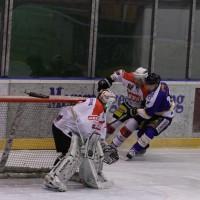 29-11-2013_ecdc-memmingen_eishockey_indians_ehc-waldkraigburg_bel_fuchs_new-facts-eu20131129_0053