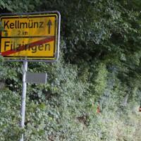 Filzingen-Baum-wis-30-06-14-008