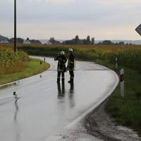 05-09-2014-buxheim-steinheim-egelseerstrasse-unfall-frontal-verletzt-feuerwehr-poeppel-new-facts-eu (15)