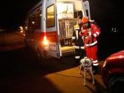 03-12-0214-neu-ulm-illertissen-vermisstensuche-polizei-feuerwehr-rettungshunde-brk-asb-wis-new-facts-eu20141204_0004