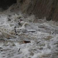 04-01-15_BW_Memmingen_egelsee_Hochwasserlage_Iller_Wasserwerk-Mooshausen_poeppel-new-facts-eu0024