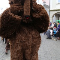18-01-15_Memmingen_Narrensprung_Fasnet_Fasching_Nachtumzug_Stadtbachhexen_Poeppel_new-facts-eu0180
