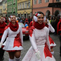 18-01-15_Memmingen_Narrensprung_Fasnet_Fasching_Nachtumzug_Stadtbachhexen_Poeppel_new-facts-eu0435