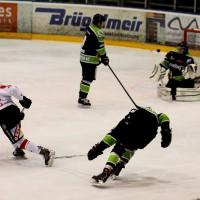 01-02-2015_Eishockey_Memmingen_Indians-ECDC_ Hoechstadt_match_Fuchs_new-facts-eu0036