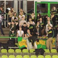 01-02-2015_Eishockey_Memmingen_Indians-ECDC_ Hoechstadt_match_Fuchs_new-facts-eu0050