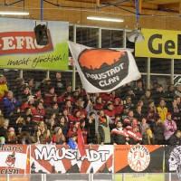 01-02-2015_Eishockey_Memmingen_Indians-ECDC_ Hoechstadt_match_Fuchs_new-facts-eu0061