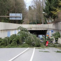 30-03-15_BY_Memmingen_Orkan_Unwetter_Feuerwehr_Poeppel_new-facts-eu0019