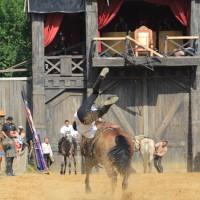 12-07-2015_BY-Kaltenberg-Festspiele_2015_Tunier_Kuehnl_new-facts-eu0272