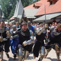 12-07-2015_BY-Kaltenberg-Festspiele_2015_Umzug_Kuehnl_new-facts-eu0290
