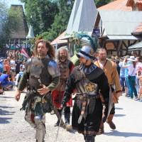 12-07-2015_BY-Kaltenberg-Festspiele_2015_Umzug_Kuehnl_new-facts-eu0327